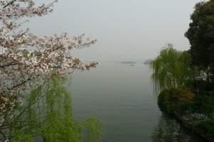 清明节去苏杭旅游,苏州、杭州+水乡乌镇 西塘4日游(纯玩团)