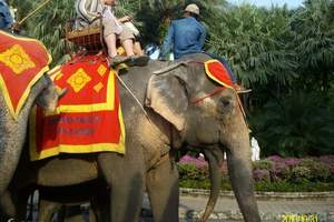 深圳出发到泰国旅游攻略 香港去曼谷|芭提雅六日游(无自费)