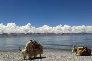 西藏林芝桃花节摄影活动12日游_成都出发到林芝自驾游