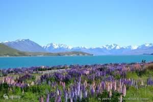 春节旅游_济南到澳大利亚、墨尔本、凯恩斯深度9日游、尊享品质