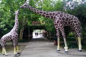上海野生动物园汽车一日游