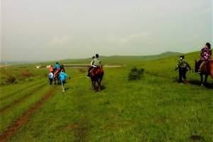 希拉穆仁草原二日游/内蒙古的草原在哪里/草原骑马旅游