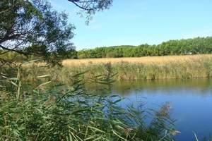 青岛去东北哈尔滨、五大连池、长白山、长春、沈阳、双飞七日游