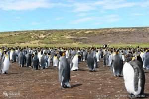 2018年11月7日亚特兰帝邮轮_中国人包船南极摄影23日游