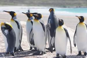 南美洲旅游攻略|巴西里约、阿根廷大冰川+火地岛16天休闲之旅