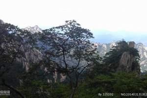 2-3月|自组|黄山呈坎八丰乐湖夜宿德懋堂3日度假游