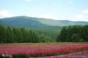 长春旅行社周边游,长春到双阳吊水壶森林公园+巴蜀映巷1日游