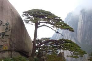 十一国庆特价 仅此一班 泰安到黄山、宏村双飞三日游