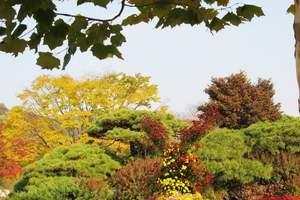 【北京去怀柔旅游攻略】怀柔红螺寺环保植树一日游|北京周边费用