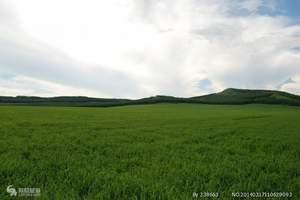 呼伦贝尔草原、莫日格勒河、额尔古纳湿地、阿尔山六日全线
