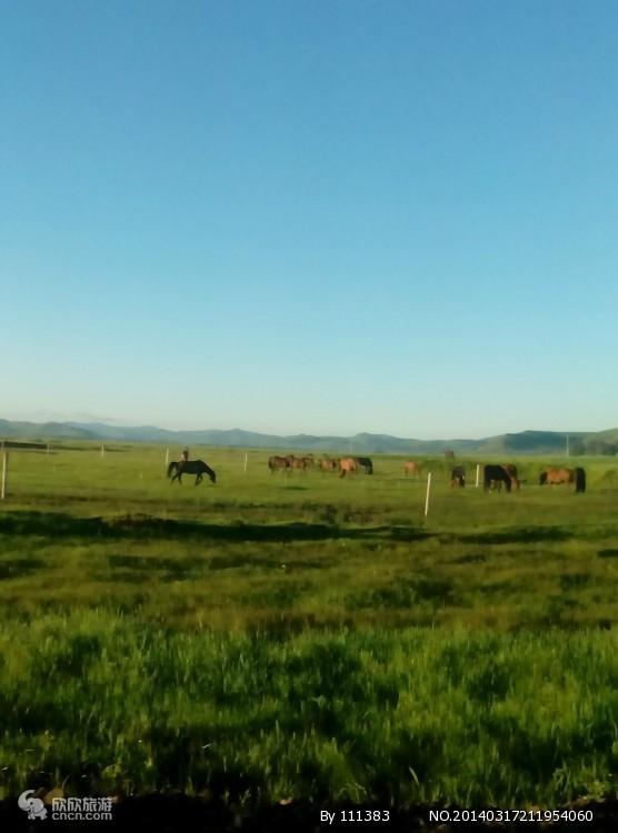 沈阳到草原二日游|科尔沁草原二日游|沈阳到科尔沁草原二日游
