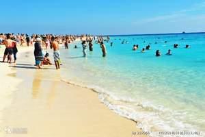 大连去埃及深度旅游_红海魅力埃及8日游