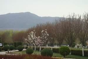 到平凉崆峒山、六盘山、小南川、植物园、凉殿峡、野荷谷三日游