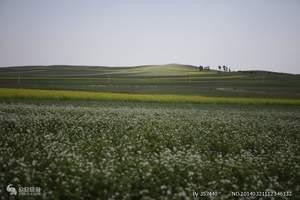 草原沙漠成吉思汗陵三日游|到内蒙古旅游去哪里|内蒙古哪里好玩