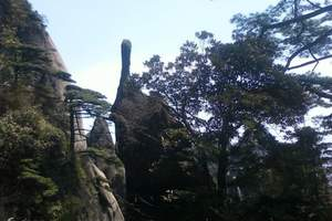石家庄跟旅游团到济南 泰山二日游多少钱泰山门票多少钱
