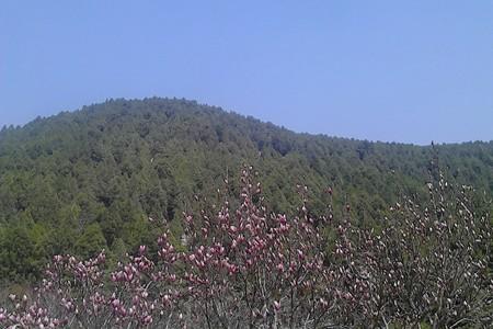 泰安出游推荐河南云台山茱萸峰玻璃栈道 红石峡大巴两日游