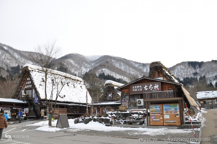 淄博到日本北海道 本州8日 淄博到北海道 本州全景八日游