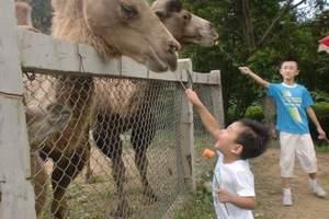 黄岛野生动物园好玩吗?动物园+生态园一日游 亲子游的好去处