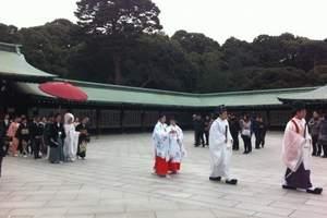 昆明到日本本州全景7日游,东京1天自由活动