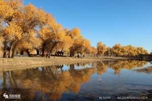 兰州到平山湖大峡谷、胡杨林、居延海、黑水城- 嘉峪关4日游