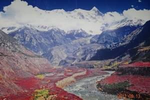 醉美林芝3日游:巴松错+大峡谷+鲁朗风景+卡定沟星空下的篝火