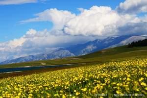 雪山花海之:乌鲁木齐赛湖、昭苏、夏特、琼库什台、木斯乡、8日