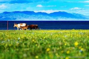 【18年北疆环线拼车自由行】喀纳斯、天山环线12日游
