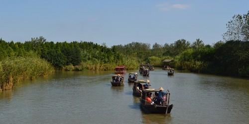 溱湖湿地公园