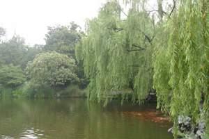 玩美黄山H1:黄山-新安江山水画廊-南京-杭州双卧7日游