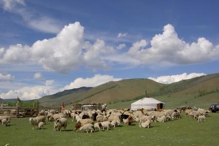 福州到哈萨克斯坦 吉尔吉斯斯坦  风行中亚全景16日