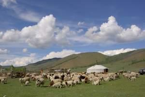 成都到内蒙古、鄂尔多斯7.5天自驾游_开车去内蒙古自驾游