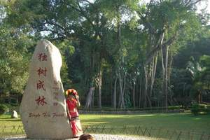 西双版纳中缅边境+打洛国门+独树成林+勐景来+一日游