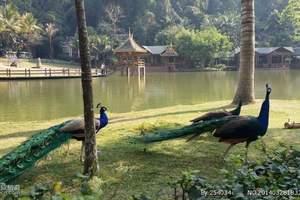 云南昆明、西双版纳、中缅边境三飞六日游