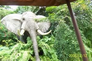 香港迪士尼乐园旅游  香港三日游(海洋公园+迪士尼乐园)