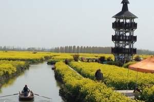 青岛去泰州旅游溱湖湿地 溱潼古镇 兴化油菜花 泰州老街二日游