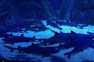 成都出发到南非旅游|南非观鲸之旅8日游|南非旅游需要哪些资料