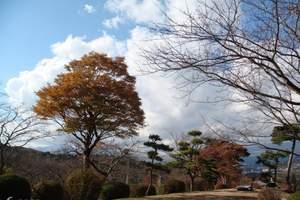 泉州到日本富士山旅游‖本州、梦幻白川乡、冰雪乐园豪华6日游
