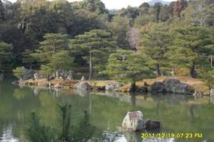 日本本州6日,东京一天自由活动、两晚日式温泉酒店、河口湖览车