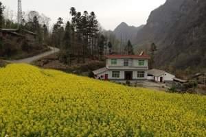 4月西安周边二日游  安康瀛湖、香溪洞、油菜花二日游
