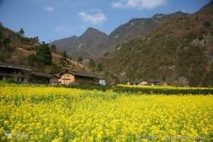 西安到汉中旅游 西安青旅 油菜花中坝大峡谷踏春两日游