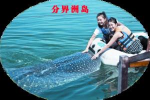 海南三亚一日游|陵水分界洲岛纯玩一日游|含餐、空调大巴接送