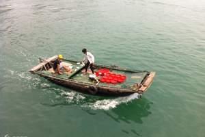 【4+5星】昆明-越南老街-沙巴-河内-下龙湾-吉婆岛6日游