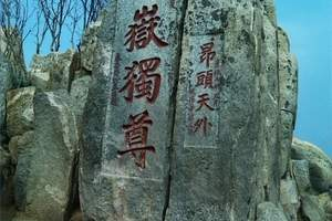 潍坊出发-曲阜三孔(孔府、孔庙、孔林)、泰山登山祈福二日游
