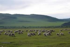 哈尔滨到杜尔伯特草原两日游-杜蒙草原两日游跟团包含什么项目