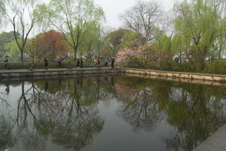 惠州出发 华东五市 上海 杭州西湖 乌镇 纯玩双飞六天品质团