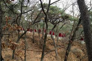 北京周边郊区旅游费用 怀柔红螺寺祈福慕田峪长城踏青巴士一日游