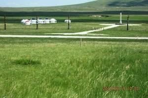 呼和浩特3日遊:希拉穆仁草原、成陵、浩瀚庫布齊沙漠