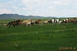 五一北京到內蒙古旅游攻略內蒙錫林郭勒多倫原生態草原雙汽三日游