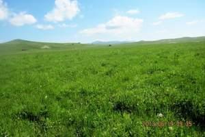 西乌珠穆沁草原