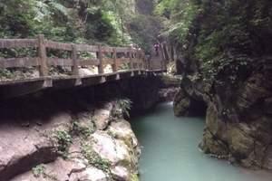 重庆到武隆_地心之旅_天坑三桥_龙水峡地缝一日游_重庆夏季